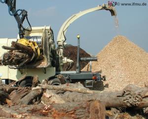 Altholzaufbereitung